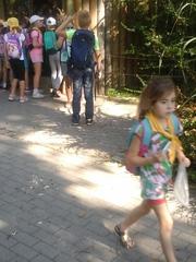 Galeria Zoo Opole 2018